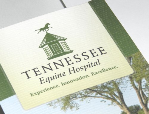 Tennessee Equine Hospital Identity Package