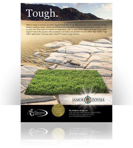 The Turfgrass Group-Jamur Zoysia Ad